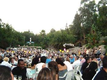 Concert photo 3